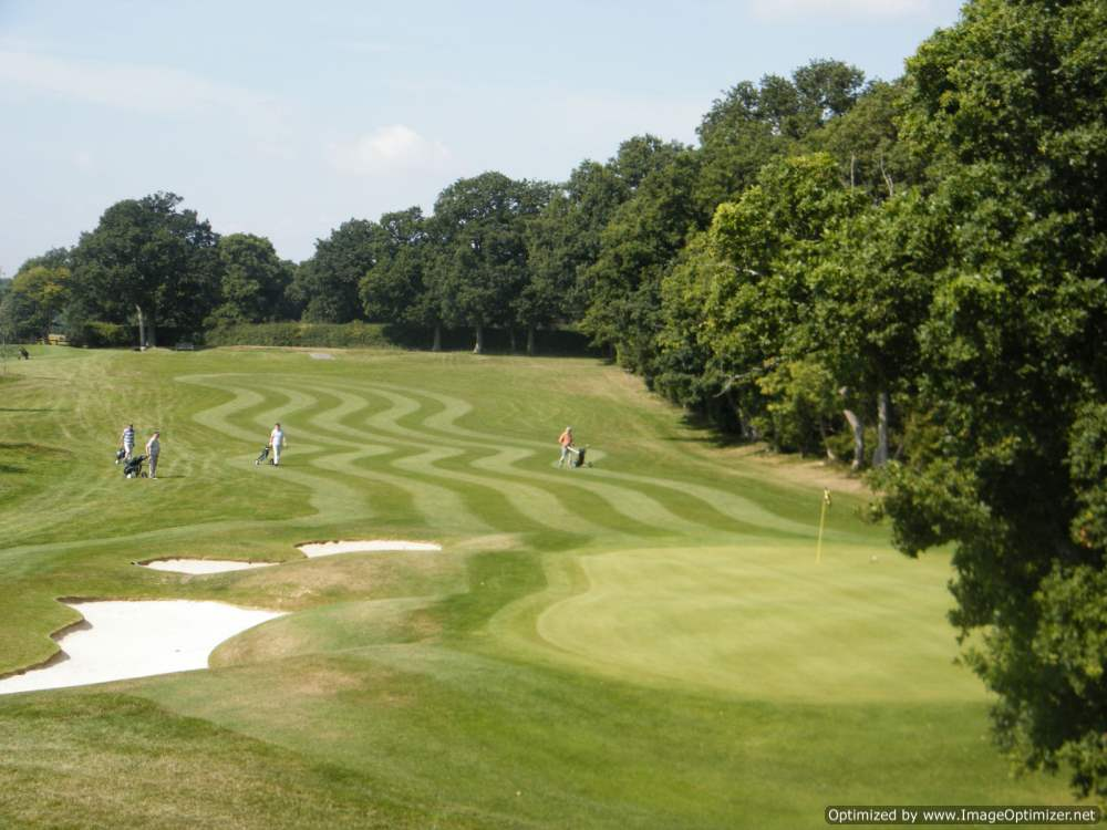 golf course 2011 012